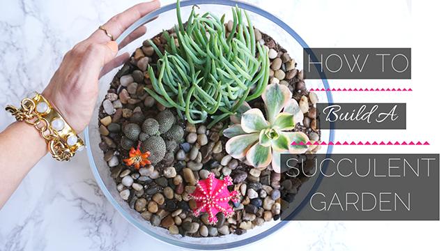 how-to-build-a-succulent-garden, terrarium-how-to, diy-terrarium, diy-succulent-garden, easy-home-decor, easy-diy-project, easy-house-plants
